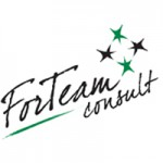 For Team Consult